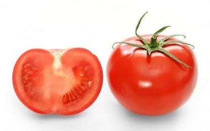 Rusiya 36 ton pomidoru Azərbaycana qaytarıb