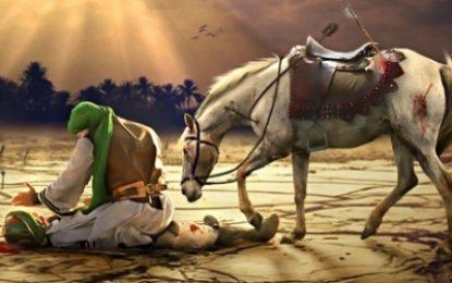 Kərbəla Şəhidi – Nafe ibn Hilal