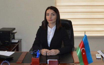 """Leyla Abdullayeva Ermənistan XİN rəhbərinin qondarma rejimin """"prezidenti"""" ilə görüşünü şərh etdi"""