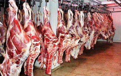 صادرات ۳ هزار تن گوشت گوسفند از داغستان به ایران