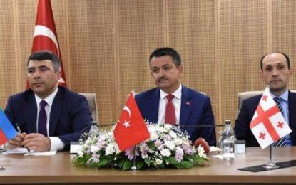 همکاری های استراتژیک گرجستان، ترکیه و جمهوری آذربایجان