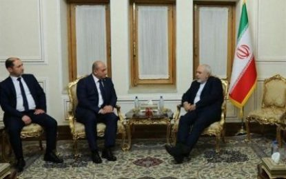دیدار معاون وزیر امور خارجه گرجستان با ظریف