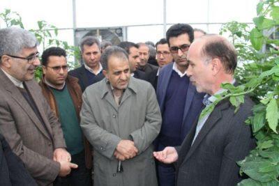 معاون وزیر اقتصاد: اراده سیاسی مقامات ایران و جمهوری آذربایجان توسعه روابط دوستانه است