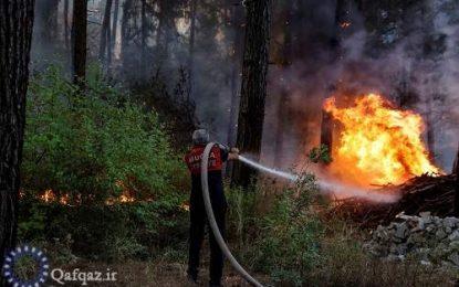 کشف ابعاد جدیدی از آتش سوزی های ترکیه و افزایش انتقادات از دولت اردوغان