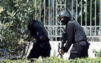 بازداشت پنج عضو داعش در گرجستان